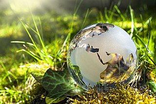 Důraz na ochranu klimatu je pandemii navzdory větší, v byznysu roste poptávka po udržitelnosti